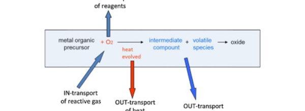 Thermal analysis of metal organic precursors for functional oxide preparation: Thin films versus powders